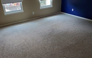 #1 carpet cleaning service suffolk