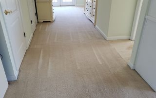 Reliable carpet cleaning service virginia beach