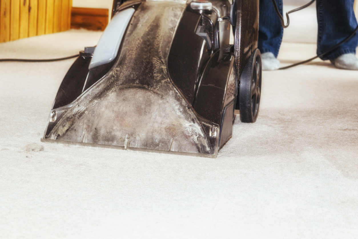 carpet cleaner service virginia beach